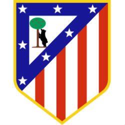 Atletico madrid voetbalreizen